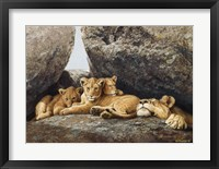 Framed Lioness With Cubs