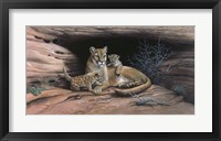 Framed Mountain Lions