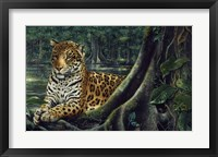 Framed Jaguar By The River