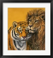 Framed Lion & Tiger
