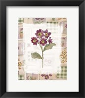 Framed Purple Flower 2
