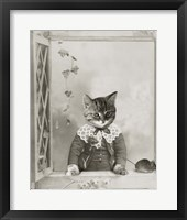 Framed Cat And Mouse