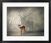 Framed Believe 3