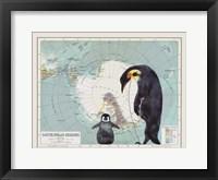 Framed Antartica