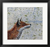 Framed Mr. Fox