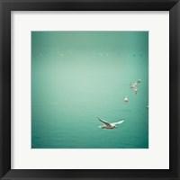 Framed Soul Birds