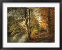 Framed Artful Autumn