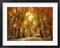 Framed Autumn Impressions