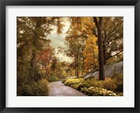 Framed Azalea Garden in Autumn