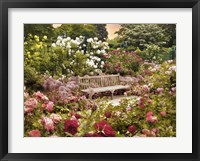 Framed Rose Garden