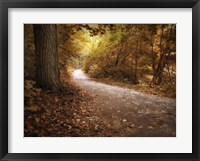 Framed Enlightened Path
