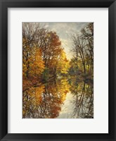 Framed Autumn's Mirror
