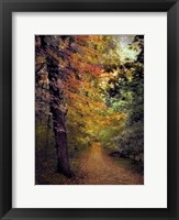 Framed Autumn Trail