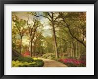 Framed Azalea Garden
