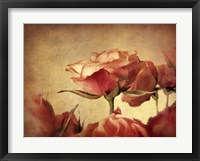 Framed Gilded Roses