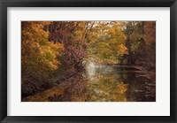 Framed November Reflections