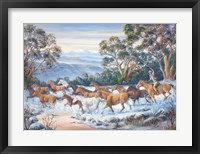 Framed Man From Snowy River