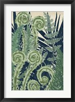Framed Fiddlehead Waltz I