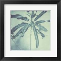 Color Shade VIII Framed Print
