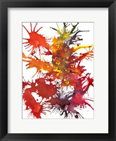 Framed Fireworks Display I