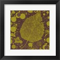 Framed Botany Expressions I