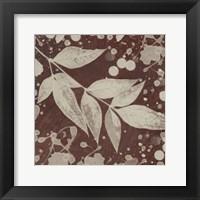 Framed Botany Expressions III