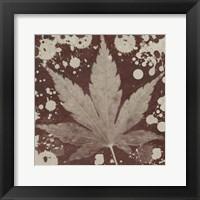 Framed Botany Expressions IV