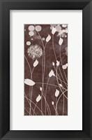 Framed Botany Expressions VII
