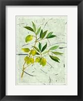 Olives on Textured Paper II Framed Print