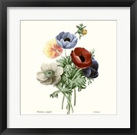 Framed Blushing Bouquet I