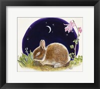 Framed Sleeping Bunny
