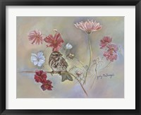 Framed Sparrow In Cosmos Flowers