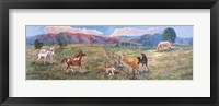 Framed Horses With Fence In Pasture
