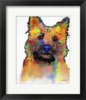 Framed Cairn Terrier 1