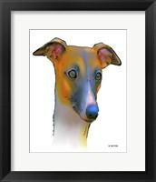 Framed Greyhound 1