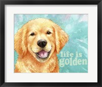 Framed Life Is Golden Retriever