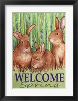 Framed Bunnies Welcome Spring