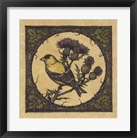Framed Apple Grossbeak Bird