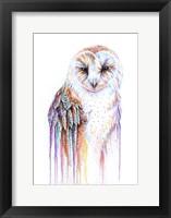 Framed Barred Rainbow Owl
