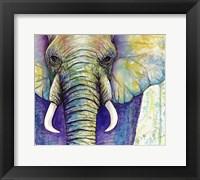 Framed Elephant Face