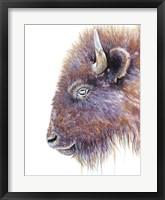 Framed Spirit of the West Buffalo