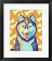 Framed Husky Pop