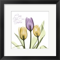 Framed Purple Sunshine Tulips