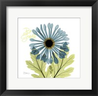 Framed Grateful Chrysanthemum H68