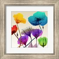 Framed Floral Calm Pop