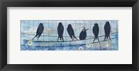Framed Coastal Birds