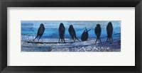Framed Birds in Blue
