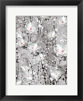 Framed Blooming in White