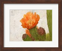 Framed Cacti Flower