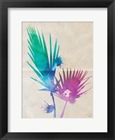 Framed Fan Palm